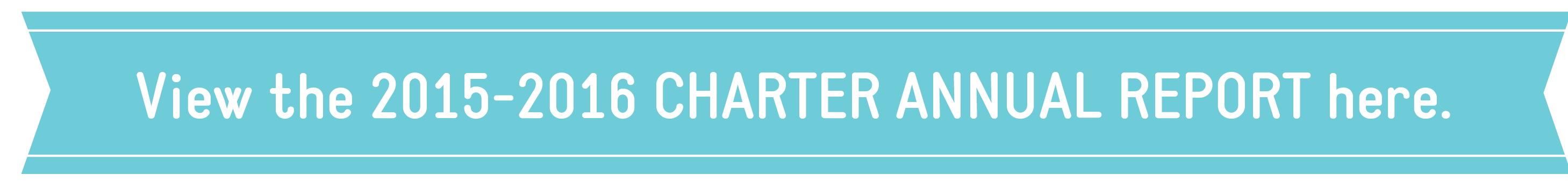 2013 Charter Annual Report